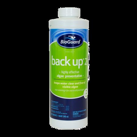 Example of Backup algae preventer product for local pool installer Northwest Indiana.